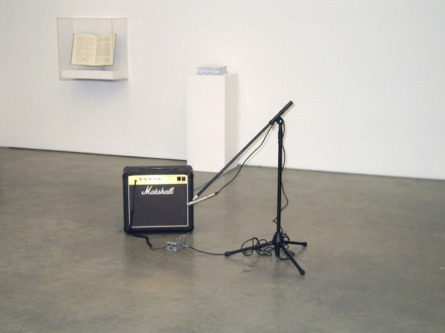 """Untitled (Feedback and Decay of La Monte Young's Composition, #5, 'Butterfly Piece', 1960)""  2006  Butterflies, amplifier, microphone stand, microphone and delay pedal  Variable dimensions"