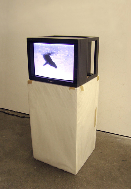 Untitled (One-Minute Breach)   2007   Video loop and monitor