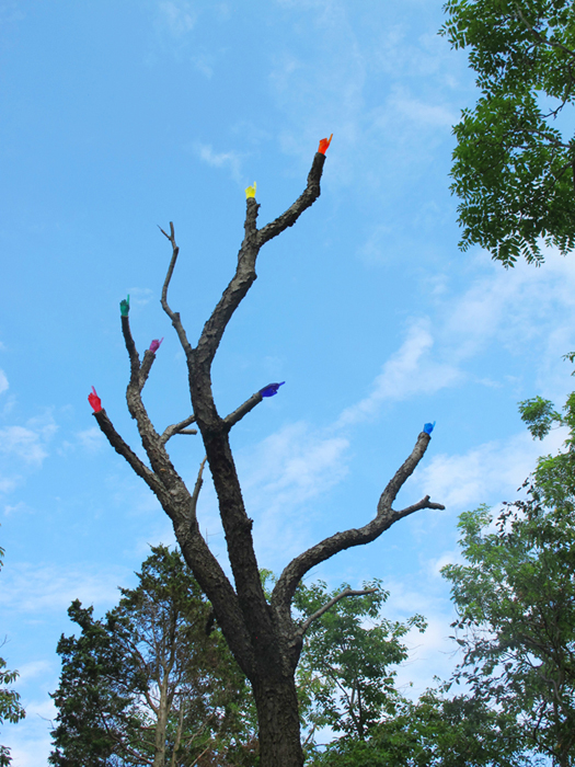 Untitled (Red, Orange, Yellow, Green, Blue, Indigo, Violet)
